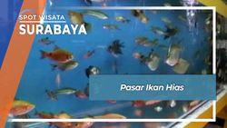 Pasar Ikan Hias Gunungsari Surabaya