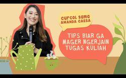 Tips Amanda Caesa Biar Nggak Mager Garap Tugas Kuliah