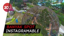 Celebrity on Vacation: Main ke Spark Forest Adventure di Sukabumi