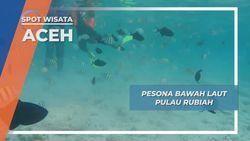 Pulau Rubiah Aceh , Lukisan Bawah Laut Terindah