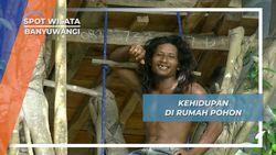 Dadang, Tarzan Modern yang Tinggal di Rumah Pohon Banyuwangi
