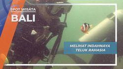 Secret Bay, Surga Populasi Biota Bawah Laut Di Bali Barat