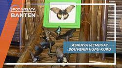 Kupu-kupu Pulau Umang Banten, Souvenir Dari Hidupnya Yang Singkat