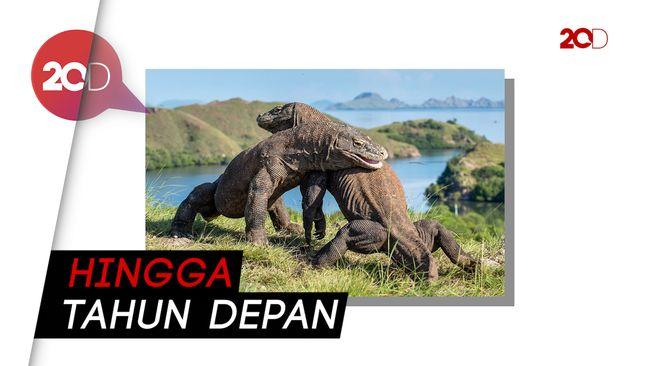Dibangun 'Jurassic Park', TN Komodo Pulau Rinca Tutup ...