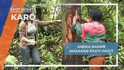 Pagit Pagit, Kuliner Karo Berbahan Aneka Bumbu Bahkan Kuli Pohon Hutan