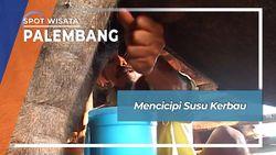 Susu Kerbau Rawa, Penganan Tradisional Ogan Komering Ulir Sumatera Selatan