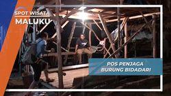 Pos Penjaga Burung Bidadari, Maluku