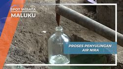 Proses Penyulingan Air Nira, Maluku