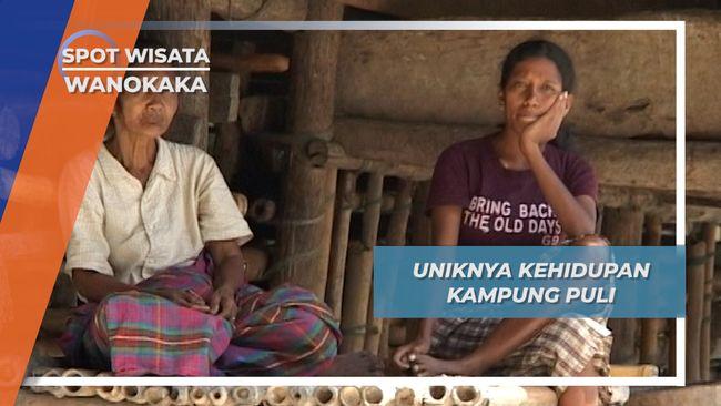 Marapu, Kepercayaan Masih Dianut Warga Kampung Puli, Wanokaka, Sumba