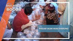 Pasar Ikan Hias Parung, Bogor