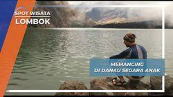 Strike..! Babon Segara Anak Berhasil Terkail di Gunung Rinjani Lombok