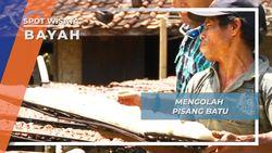 Mengolah Pisang Batu Bayah Lebak Banten