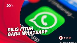 Asyik! Kini Bisa Telepon dan Video Call Via WhatsApp Desktop