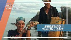 Teripang, Si Timun Laut Kekayaan Alam Perairan Kotabaru Kalimantan Selatan