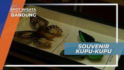 Berburu Souvenir Unik dan Lucu di Taman Kupu-kupu Bandung