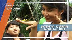 Berwisata dan Belajar di Taman Kupu-kupu Bandung