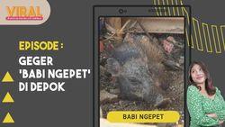 Viral Babi Ngepet di Depok, Memahami Cara Kerja Alam Gaib