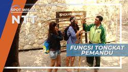 Tongkat ini Wajib Dibawa Pemandu Wisata Pulau Komodo, Nusa Tenggara Timur