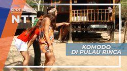 Pulau Rinca, Habitat Komodo yang Dilindungi Dunia, Nusa Tenggara Timur
