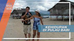 Pulau Babi, Tempat Persinggahan Nelayan saat Mencari Ikan, Flores