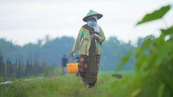 Jamu Kiringan Warisan Leluhur yang Tingkatkan Ekonomi Bantul