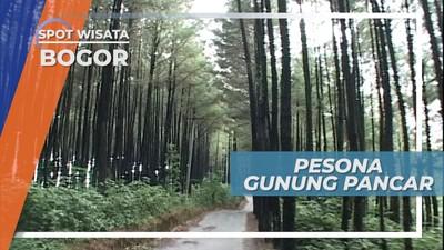 Gunung Pancar, Destinasi Wisata Alam yang Wajib Dikunjungi saat ke Bogor