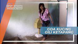 Berkunjung ke Goa Kucing, Ziarah Makam Syekh Maulana di Gili Ketapang Probolinggo