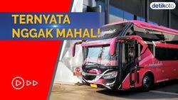 Segini Ongkos Naik Bus Premium Double Decker