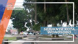 Kota Sejuk Wonosobo,  Beralam Indah Berudara Bersih