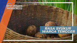 Tradisi Upacara Untuk Mengungkapkan Rasa Syukur Masyarakat Suku Tengger, Probolinggo