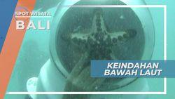 Indahnya Bawah Laut Jauh Lebih Indah Bila Kita Berjalan di Dasar Pasir Pulau Bali