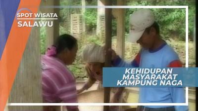 Hamparan Sawah dan Alam Hijau di Kampung Naga Salawu Jawa Barat