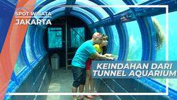 Menikmati Keindahan Ekosistem Laut dari Dalam Aquarium Raksasa, Jakarta