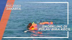 Snorkeling, Melihat Keindahan Bawah Laut di Pulau Bira Kecil, Jakarta