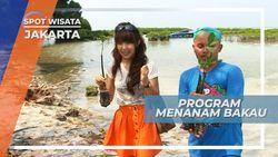 Mangrove, Tanaman Pelindung Garis Pantai dari Abrasi, Jakarta