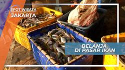 Mengunjungi Ramainya Pasar Ikan Pulau Pramuka, Jakarta