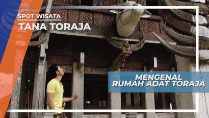 Tanduk Kerbau Sebagai Penanda Status Adat Sebuah Keluarga Masyarakat Toraja