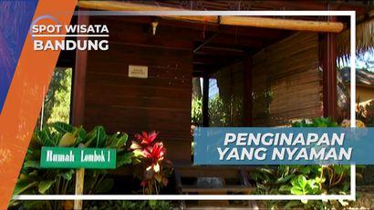 Menikmati Suasana Asri Penginapan Nyaman di Bandung