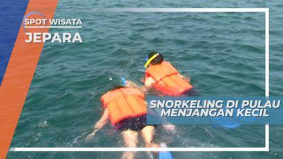 Snorkeling Menikmati Keindahan Bawah Laut Pulau Menjangan Kecil Jepara