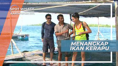 Mencoba Menangkap Ikan Kerapu Menggunakan Jaring, Karimunjawa Jepara