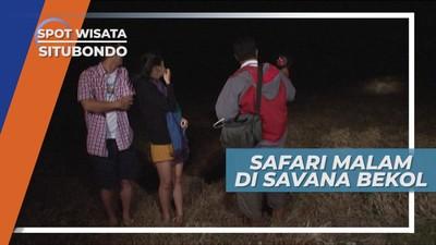 Melihat Satwa di Gelapnya Malam, Serunya Safari Savana Bekol Situbondo