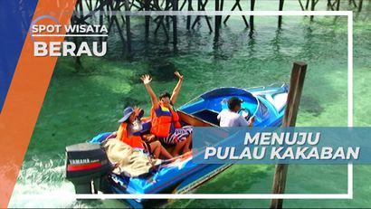 Pulau Kakaban, Mutiara Wisata di Kabupaten Berau