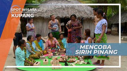 Sirih Pinang, Lipstik Alami Bagi Warga Pantai Kolbano Kupang