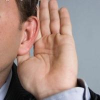 Rambut Telinga yang Rusak Bisa Diperbaiki dengan Sel Punca