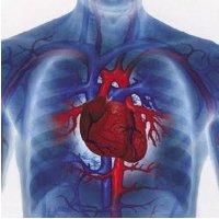 Pantangan Bagi Penderita Jantung Koroner
