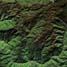 Lafal Allah tersebut terlihat di Google Earth koordinat latitude 3 derajat 4839.81N dan longitude 97 derajat 4617.01E. (Google Earth).