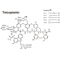 Teicoplanin