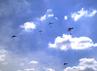 Selain atraksi pesawat tempur, HUT TNI AU ini juga dimeriahkan dengan terjun payung.