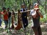Balai Besar Konservasi Sumber Daya Alam (BBKSDA) dan WWF Indonesia menemukan harimau yang telah mati tersebut di lahan konsesi Hutan Tanaman Industri (HTI) PR Arara Abadi anak Sinar Mas Group di Kecamatan Pangkalan Kuras, Kab Pelalawan, Riau.
