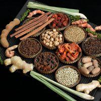 Pakar Herbal Profesor Hembing Meninggal Dunia